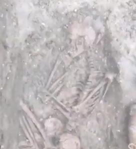 Vignette de l'actualité Les restes d'un adolescent de l'Âge du bronze découverts près de Stonehenge.