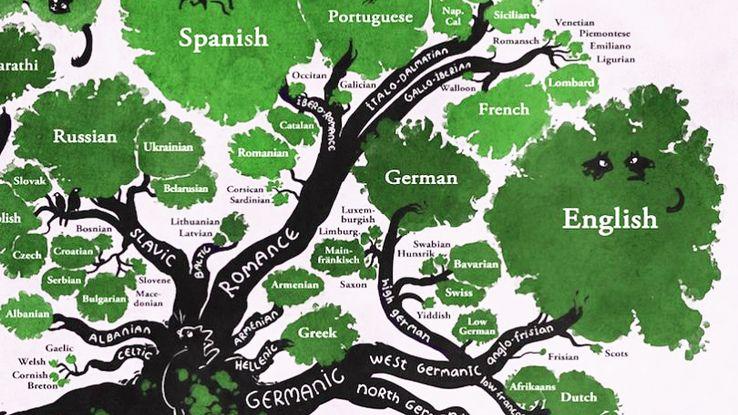 Vignette de l'actualité La construction des langues
