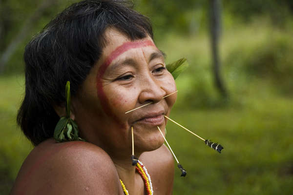 Vignette de l'actualité Le peuple Yanomami