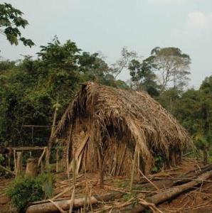 Vignette de l'actualité Le dernier survivant d'un peuple autochtone d'Amazonie filmé dans cette vidéo